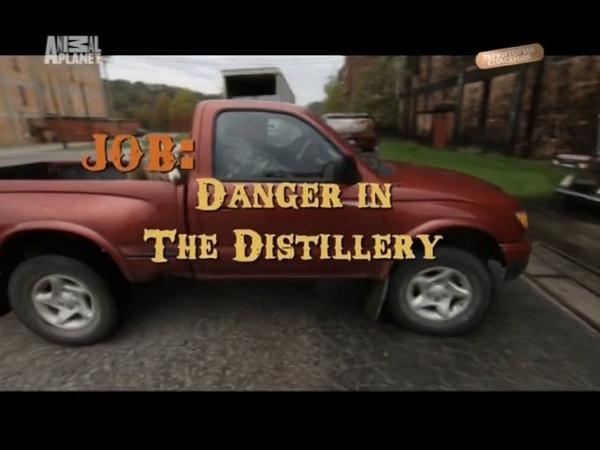 Укротитель по вызову Опасность на спиртзаводе Шотландское общество защиты дикой природы