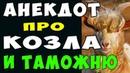 АНЕКДОТ про Таможенников и Козла и Батюшку Самые смешные свежие анекдоты