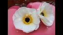 DIY - Crepe paper flower tutorial 3 - Hướng dẫn làm hoa từ giấy nhún