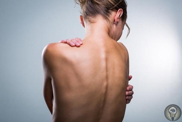 9 упражнений для красивой и здоровой спины
