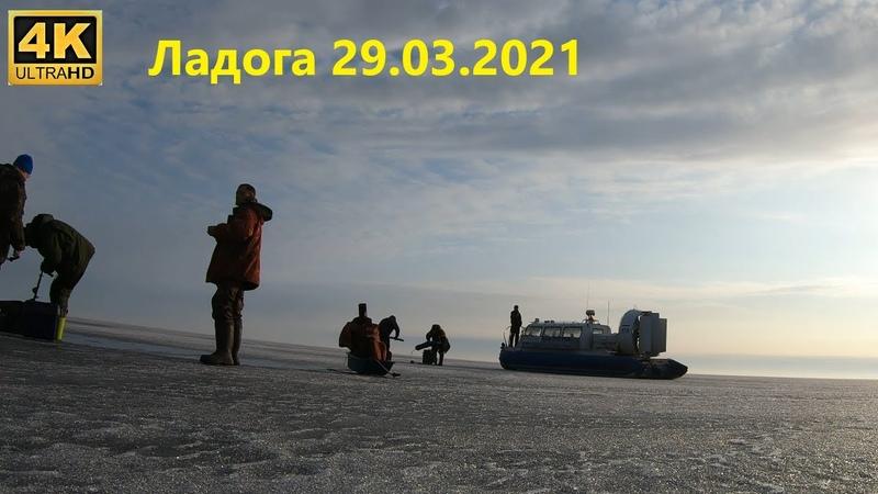 Ладога 29 03 2021 Рыбалка по последнему льду 2021