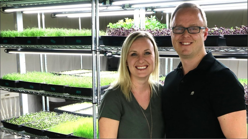 $10 000 a month growing microgreens in a basement