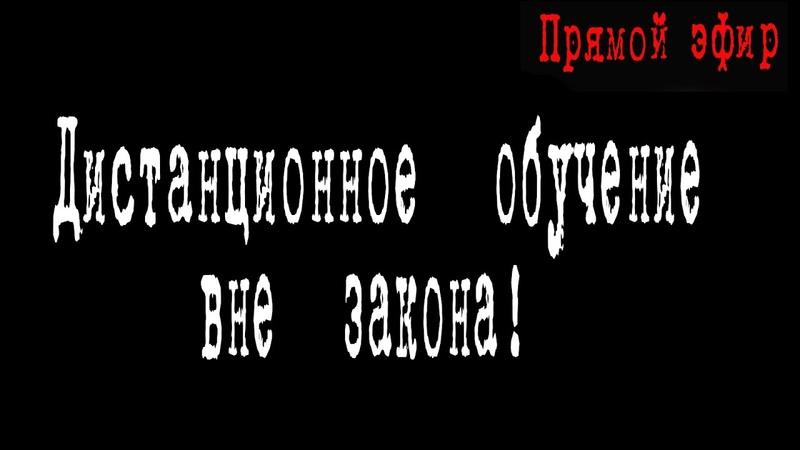 Дистанционное обучение вне закона ТатьянаФедяева ИринаМедведева ВасилийМельниченко