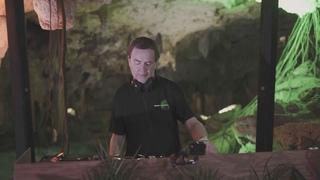 Nick Warren | Beats of Nature & The Soundgarden - Tulum (Mexico)