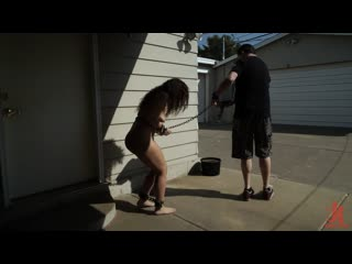 Victoria Voxxx - Diary of a Madman, Episode 2: Working The New Pet
