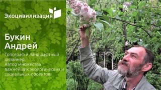 Уникальный «Парк диких трав для пчёл» в Тарусе // Интервью Елены Малой