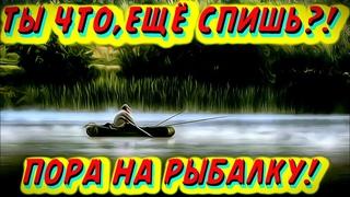 Рыбалка-лучший отдых от ежедневной суеты/Приколы на рыбалке/Я ржал до слёз/Трофейная рыбалка 2021/
