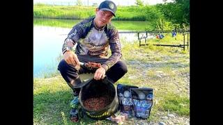 Рецепт прикормки с карповым питанием FFEM Baits, для быстрой ловли карпа, на короткой сессии!!!