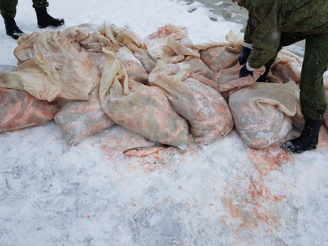 Под Таганрогом пограничники задержали браконьера с уловом на сумму более 1,8 млн. рублей
