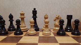 Шахматы. Уникальный способ выиграть в шахматы. Супер комбинация и блестящая победа.