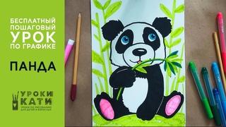 Как нарисовать панду фломастерами, пошаговый урок для детей от 6 лет