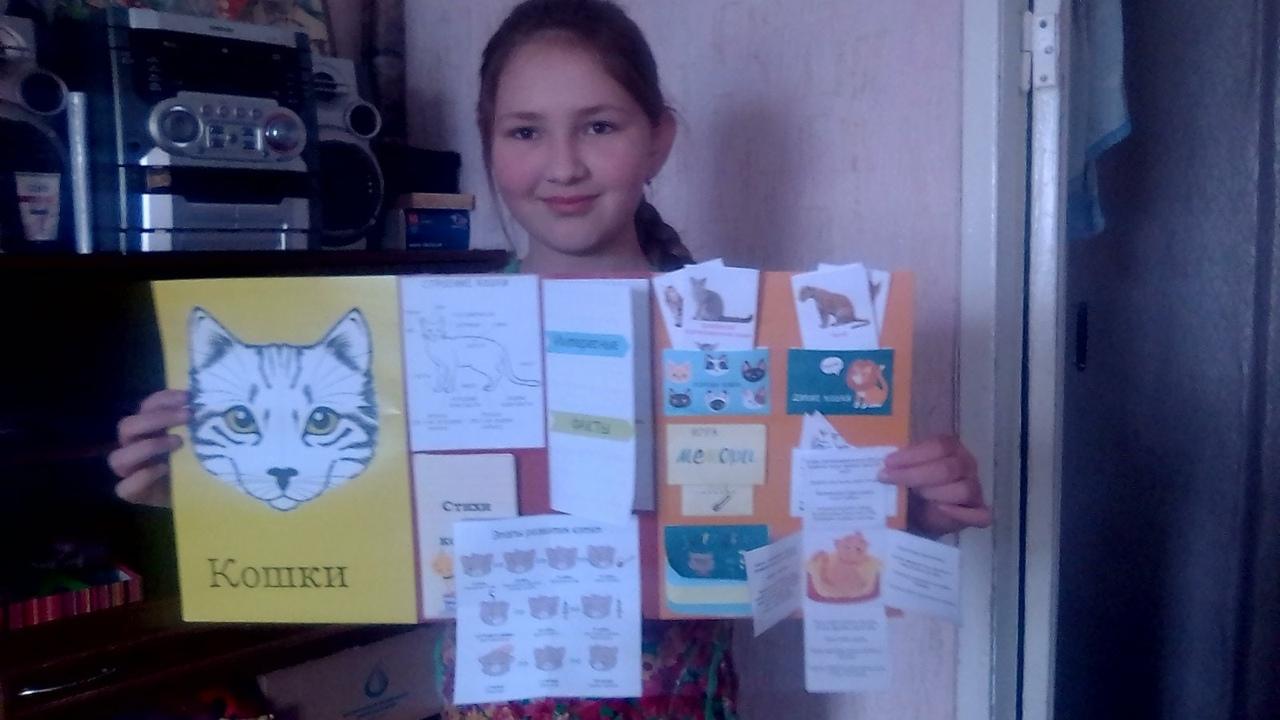 В школе №3 города Петровска подвели итоги дистанционного конкурса лэпбуков