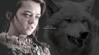 Arya Stark   I see you, wolf child