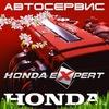Honda&Toyota Expert
