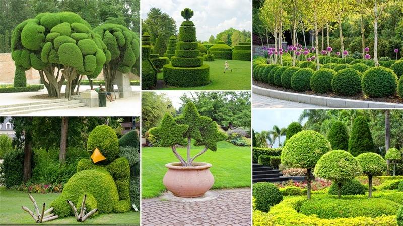 120 Amazing Topiary Garden Ideas DIY Garden