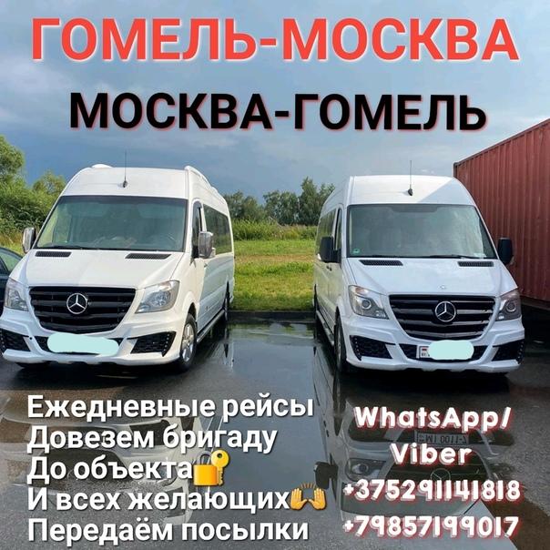 Пассажирские перевозки гомель москва трактор спецтехника россия купить