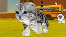 Парк КОШЕК с Кидом. Странный СИМ КОТЕНКА в Cat Simulator на пурумчата