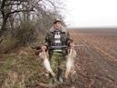 Охота на зайца в полях Краснодарского края старый охотник знает где его найти