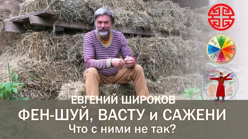 Фен шуй Васту и Сажени Что с ними не так Евгений Широков
