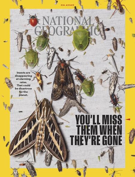 National Geographic Interactive - 05.2020
