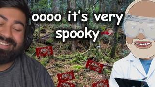 Exploring the Japanese Kitkat Forest