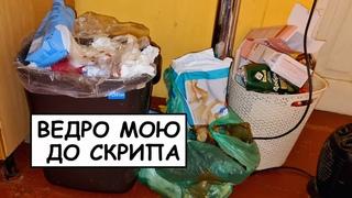 ТАК НИКТО НЕ МОЕТ МУСОРКУ! Как очистить, отмыть, продезинфицировать мусорное ведро и не только?!