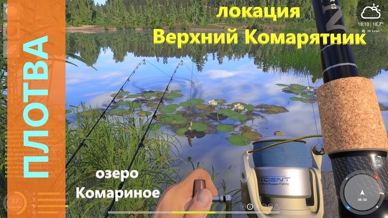Русская рыбалка 4 озеро Комариное Плотва среди карасей