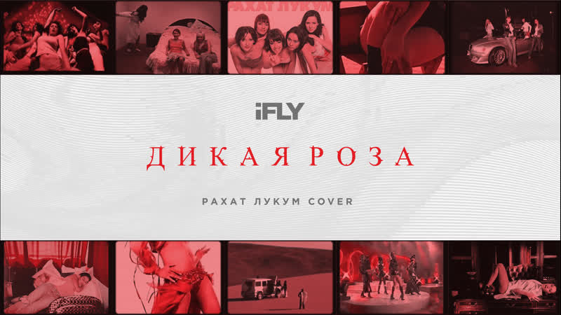 IFLY Дикая Роза Рахат Лукум Cover