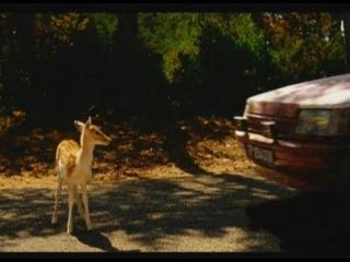 Playstation2 bambi vs car?