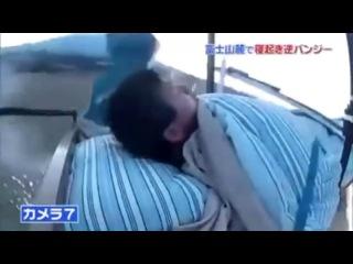 Прикол. Жесткий японский розыгрыш. Полет в кровати.