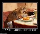 Фотоальбом Валентина Валентиновича