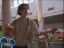 Зажигай со Стивенсами 1 сезон 1 серия Even Stevens