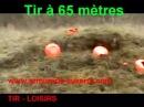 Walther Dominator 1250 VS Plateaux d'argile cal 5 5 40 Joules