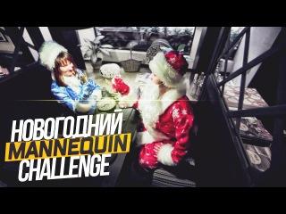 #76 - Новогодний Mannequin challenge / Останови время - Манекен Челендж