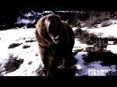 [Minimal] Brandon Hadden -Techno Killer (Brandon Hadden Tom M.C Remix)
