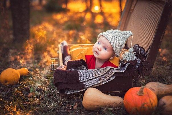 челюсти покажут осенняя фотосессия идеи для деток с чемоданом корни