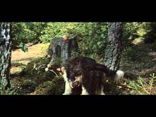 Золотые рога. (1972). Полная версия.