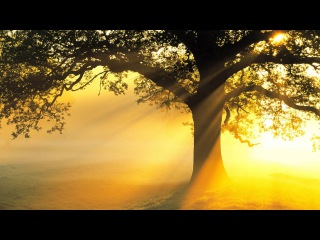 3 HOURS Best Relaxing Music Minimalist | Voice | Meditation - Relax - Stress Relief - Spa