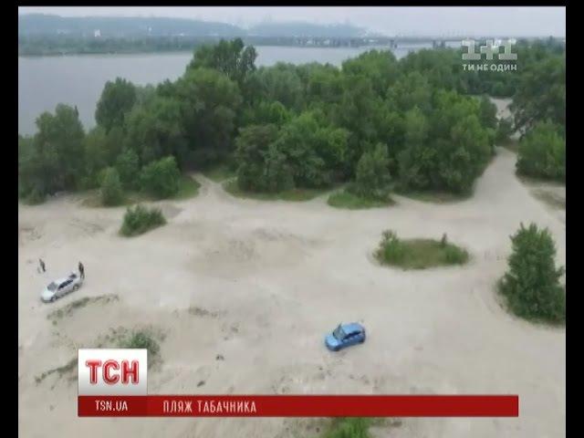 У Яна Табачника відбирають пляж на березі Дніпра