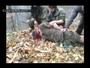 3 Çeçen Rus askerinin kafasını kesiyor