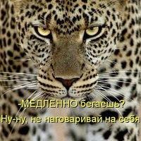 Оксана Зарипова