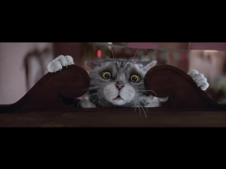 Рождественская реклама о том, что всё начинается с кота.