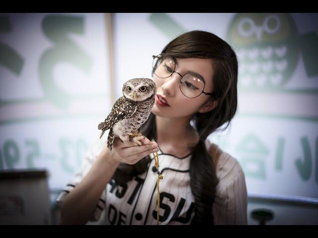Ikefukurou Owl Cafe in Ikebukuro Japan Alodia