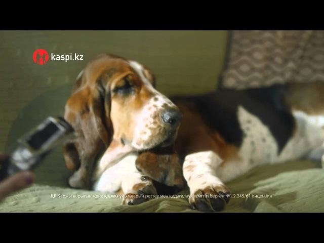 Kaspi Магазин Дюша және оның иесі туралы жаңа ролигімен Kaspi Bank Каспи Банк