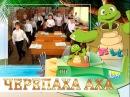 Черепаха Аха