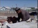 Тәртіп сақшылары Заңсыз келуші акция басталғалы төрт күннің ішінде 800 заңбұзушылықты анықтаған