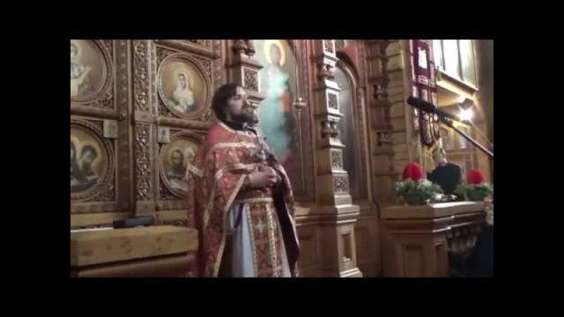 Проповедь иерея Сергия Чекоданова об обретении зрения, видения Бога