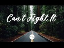 Quintino x Cheat Codes - Can't Fight It (Vector Remix)