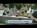 Корреспондент НТВ получил по лицу от быдла в прямом эфире