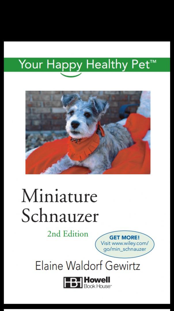 Miniature Schnauzer Your